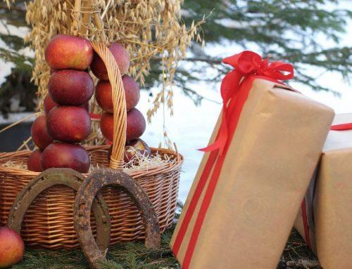 Vi önskar er en underbar jul och ett gott nytt år!!